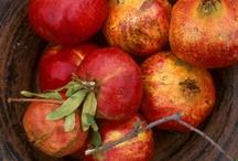 Pomegranates / by Bluebird CSA.com