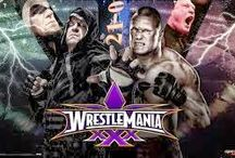 WWE The Under Taker VS Brock Lesnar / best Match Ever  / by Jack Morgan
