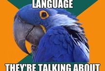Language Humor / by Mango Languages