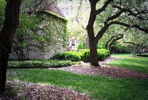 St. Joan of Arc Chapel  / by Marquette University