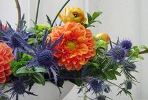 Floral bouquet goodness / by Laurie Farnes
