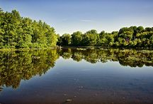 South Jersey / by Ron Brown