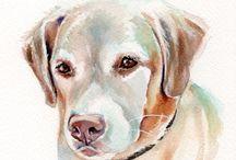 Labradors& Retrievers / by Josilin Rose