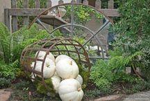 In the Garden / by Barb Roat-Olinski