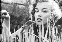 My Girl Marilyn / by Candace Vladimirovs