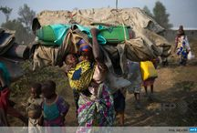 Crisis in the Democratic Republic of Congo  / by Women's Refugee Commission