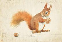 Art & Illustration / by Gretchen Harple