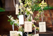 Wedding Seating Plans / by Party Pieces