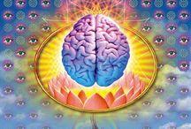 Psychedelia / by Steve Elliott