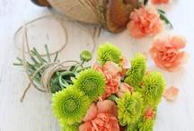 flowers / by Jane Billingsley