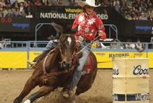 Let's Rodeo! / Get a look at a cowgirl's life inside the arena at some of the biggest rodeos on the trail.  / by National Cowgirl Museum and Hall of Fame
