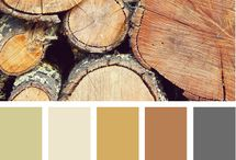 Color schemes / by Alasha Hunt