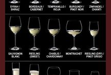 Great Glasses!~ / by Angelini Wine