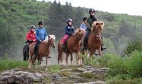 Horseback Riding Vacations / by Tracy Beno McPherson