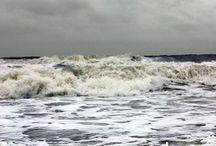 ocean / by Leigh Freneau