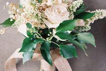 Blooms / by Ashley Boyce