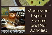 Homeschool: forest Animals Unit / by Wholesome Mommy