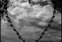 Hearts / by Kathy Dietkus