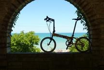 Freedom Unfolds... / by Dahon Bikes