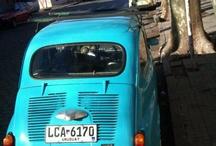 Uruguay / by elizabeth quick wade