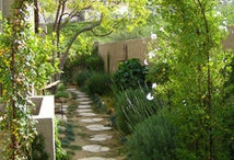 Outdoor Living: Landscape, Porches,Pools / by Alison Wesley