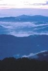 Smoky Mountain Beautys / by Michelle S