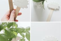 Class Ideas / by Elise Delfield