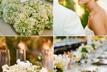 Wedding Centerpiece/Table setting / by Aliucus K