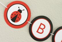 Lady Bug Decorations / Lady Bug Baby Shower or Birthday Party Decorations and Ideas / by Pass The Scissors