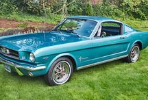 I <3 Mustangs!!!! / by Megan Parsons