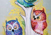owls / by Diane Zink