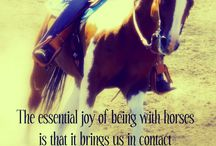 Just about Horses...  / Quotes, photos, sayings, and anything else related to the beauty and meanings of the horse / by Christy Fleener