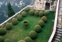 gardens / by Karla Freund