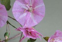 paper flowers / by Denise Fike