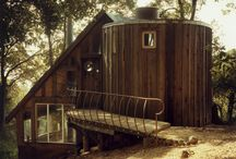 The Cabin Life / by Dori Papp