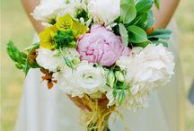 Wedding <3 / by Aoife Arden