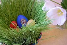 Easter / by occupationmommy