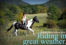 equestrian life / by Bekky Keller