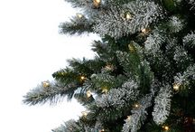 Tree Classics / We love Christmas, and we have a great time showing that to people each and every year! Tell us about your holiday celebrations and share what makes it exciting for you and your family. Happy pinning!  / by Tree Classics