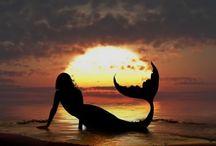 Mermaids / by Cheran Smith