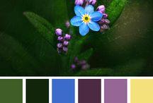 Colors! / by Carri Wellington