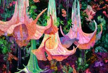 Quilt / by Anne Davies