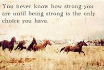 Quotes & Words of Wisdom / by Linda Intelisano