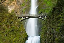 Oregon / by Julie Shaw