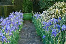 Garden Path / by Bruce Park Arts