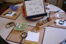 First unit of inquiry / Starting the pyp journey / by Laura Zimmerman