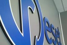 We Make Signs Too? / by Webspec Design
