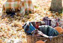 Autumn / by christine scott