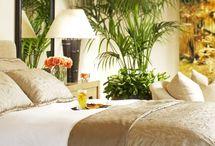 Tropical home / by Cindy Stillwaggon