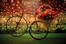 Bicycles Inflower Me / by Betty Clark